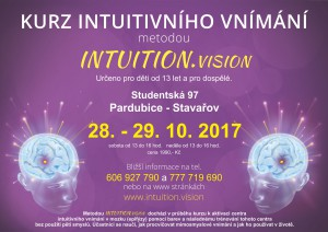 kurz intuitivniho vnimani Pce 28-29-10